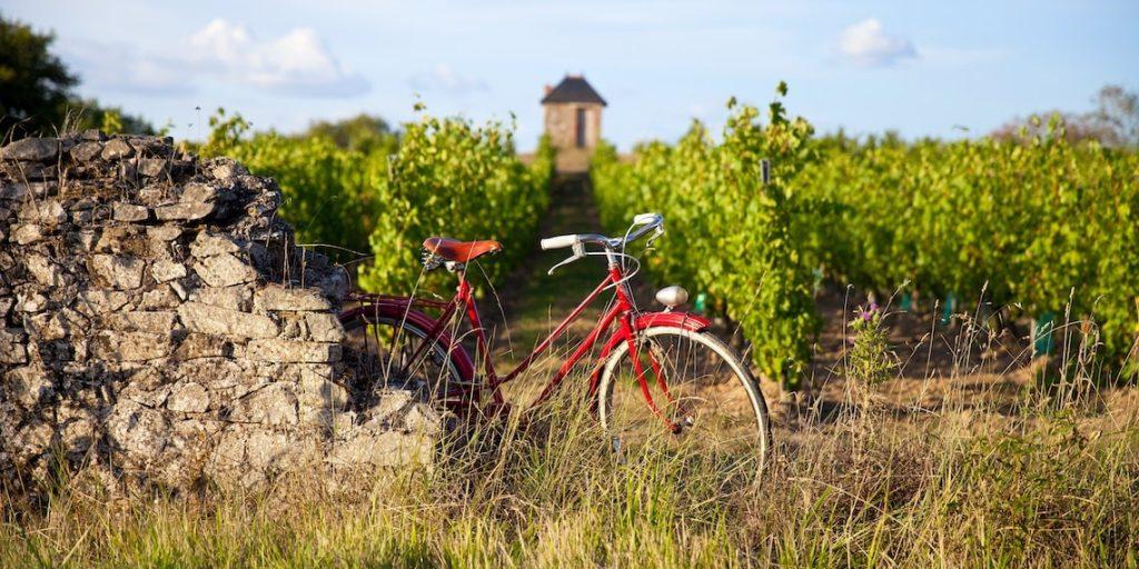 vélo vignobles